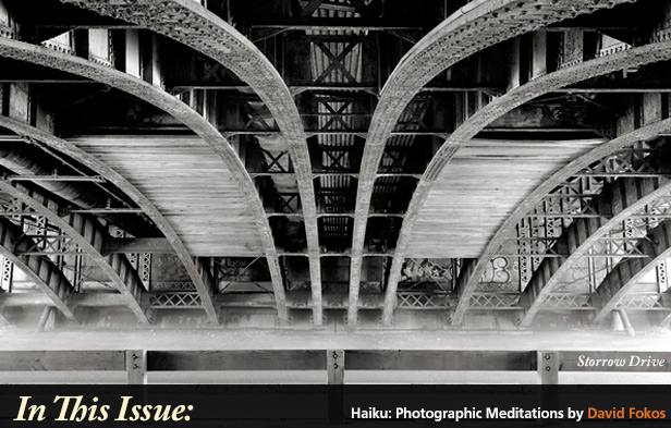 Haiku: Photographic Meditations  David Fokos