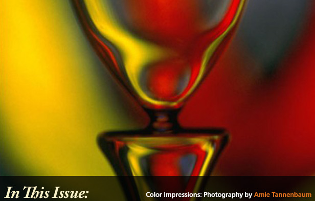 Color Impressions: Photography by Amie Tannenbaum